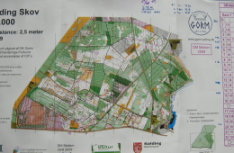 Danish Middle distance Champs – Gødding