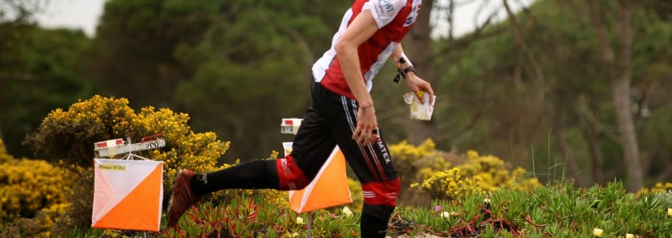 2014 European orienteering champs Portugal